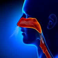 ניתוח קונכיות האף